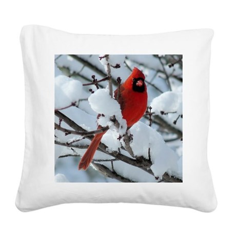CAW1010SF Square Canvas Pillow