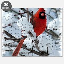 CAW1010SFa Puzzle