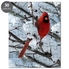 CAW9x12SF Puzzle