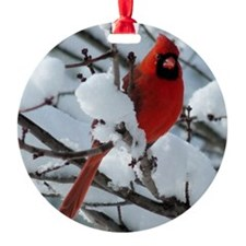 CAW9x12SF Ornament