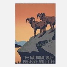 national_parks_preserve_w Postcards (Package of 8)