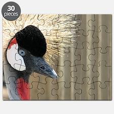 CrownedCrane Wallet Puzzle