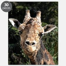 SmilingGiraffe Kindle Puzzle