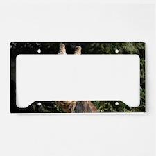 SmilingGiraffe Shoulder License Plate Holder