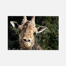 SmilingGiraffe Shoulder Rectangle Magnet