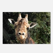 SmilingGiraffe Shoulder Postcards (Package of 8)