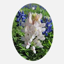 Pink and Bluebonnets Oval Ornament