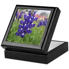 Texas Bluebonnets Keepsake Box