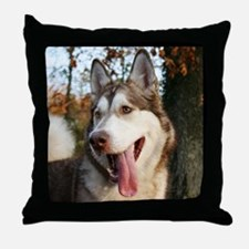 6x6-alosia Throw Pillow