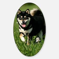 shiba_journal Sticker (Oval)