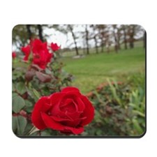 Red Roses in Park Mousepad