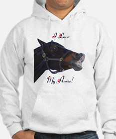 buster_horse_pillow_16in Hoodie