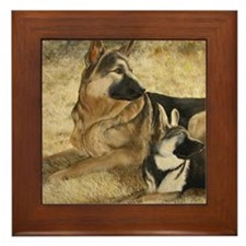 gsd-and-puppy Framed Tile