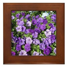 Purple Petunias Framed Tile