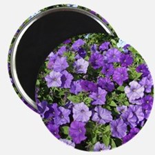 Purple Petunias Magnet