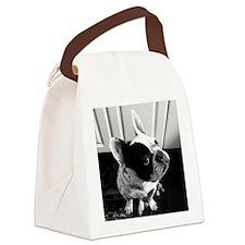 Otis_HiRez Canvas Lunch Bag