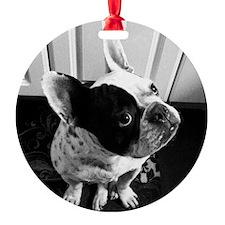 Otis_HiRez Ornament
