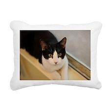 Donny Rectangular Canvas Pillow
