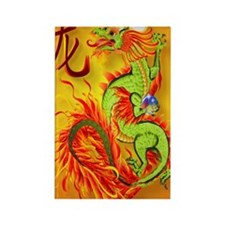 Nook Sleeve  Flaming Dragon and s Rectangle Magnet