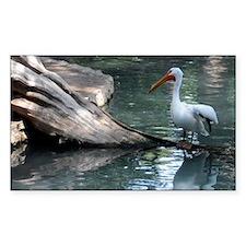 Pelican II Decal