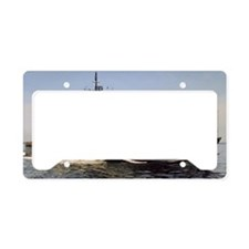 brumby de large framed print License Plate Holder