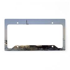 brumby ff large framed print License Plate Holder