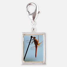 Dragon_Fly Silver Portrait Charm