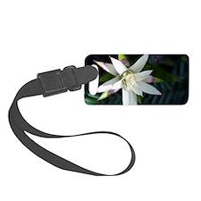 Star Flower Luggage Tag