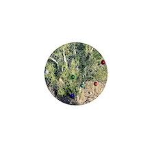 palo verde tree ornament Mini Button