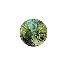 ornament palo verde tree Mini Button