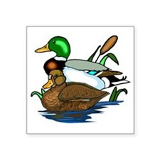 "mallard ducks Square Sticker 3"" x 3"""
