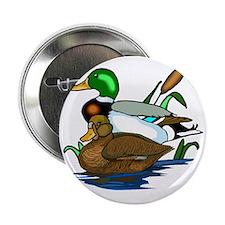 """mallard ducks 2.25"""" Button"""