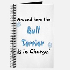 Bully Charge Journal