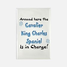 Cavalier Charge Rectangle Magnet