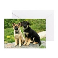00-cover-vega-brutus-wildeshots-0515 Greeting Card