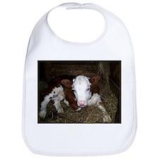 Baby calf Bib