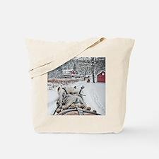 20101218-099 Tote Bag