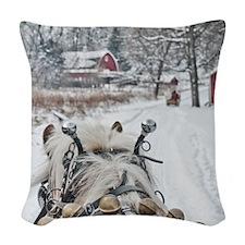 20101218-099 Woven Throw Pillow