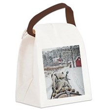 20101218-099 Canvas Lunch Bag