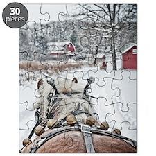 20101218-099 Puzzle