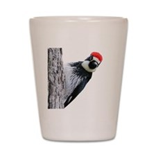 Acorn Woodpecker Bird T-Shirt Shot Glass