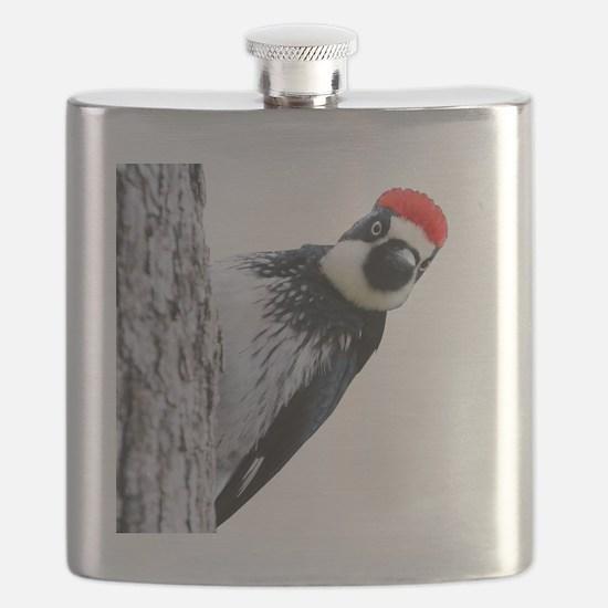 Acorn Woodpecker Bird T-Shirt Flask
