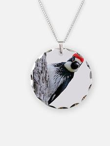 Acorn Woodpecker Bird T-Shir Necklace