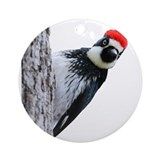Woodpecker Ornaments