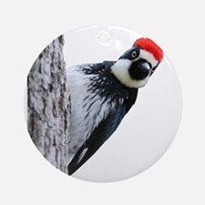 Acorn Woodpecker Bird T-Shirt Round Ornament
