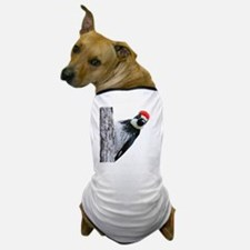 Acorn Woodpecker Bird T-Shirt Dog T-Shirt