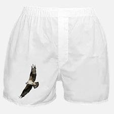 Osprey Bird T-Shirt Boxer Shorts