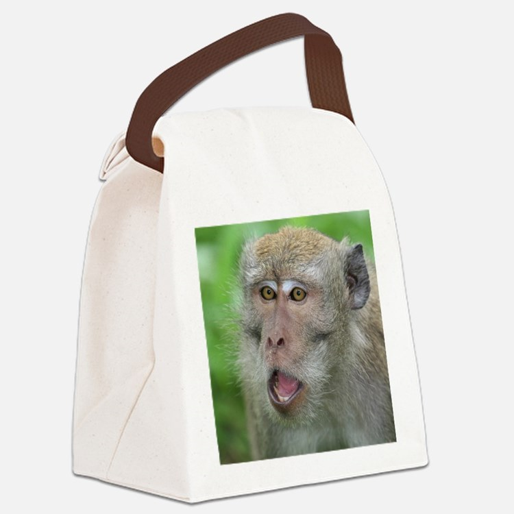 Crab-eating Macaque Monkey T-Shir Canvas Lunch Bag