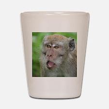 Crab-eating Macaque Monkey T-Shirt Shot Glass