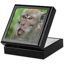 Crab-eating Macaque Monkey T-Shirt Keepsake Box